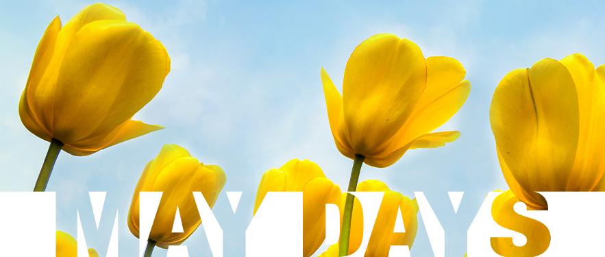 May days akcija!